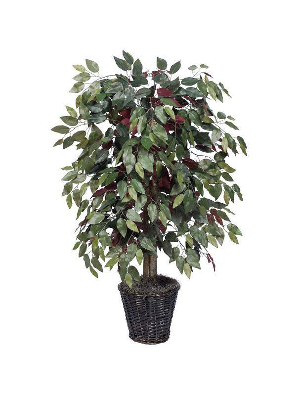 Arbustos para decoracion de interiores